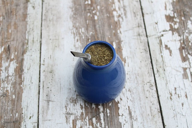 Co to jest Yerba Mate